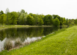Campground Pond